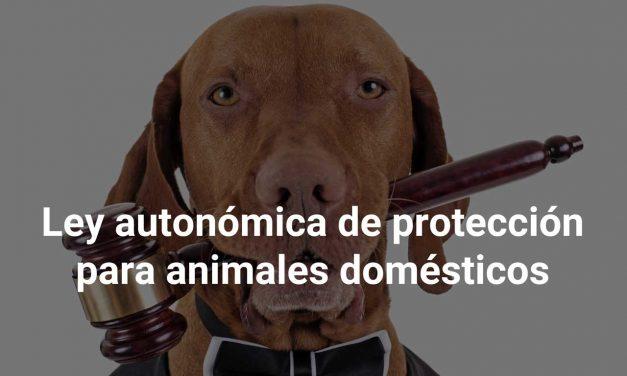 Nueva ley autonómica de protección de los animales domésticos