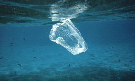 Las bolsas de plástico dejarán de ser gratis el próximo 1 de julio y se prohibirán para 2021